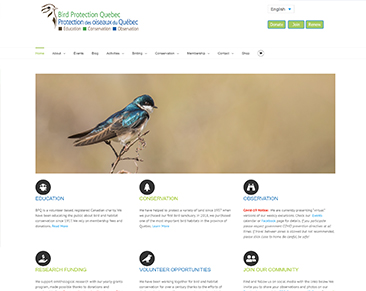 Bird Protection Quebec website screenshot