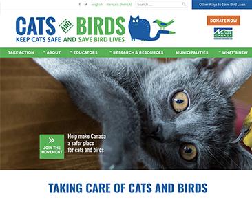 Cats and Birds website screenshot