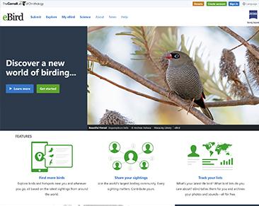 eBird website screenshot