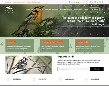 FLAP website screenshot
